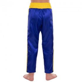 Шлем г/л Alpina CARAT FLASH