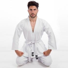 Кроссовки для волейбола Asics GEL-TASK FW14-15