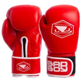Ботинки The North Face M VERTO S4K GTX