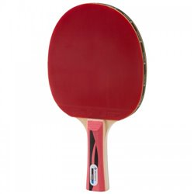 Ракетка для настольного тенниса Tecnopro Expert*** M3
