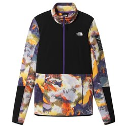Флис горнолыжный The North Face 2020-21 Diabloidlayer 1/4 Zip Peak Purple Alpsascent Print