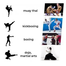 Очки горнолыжные Alpina 2020-21 5W1NG Q+CM Limited Edition
