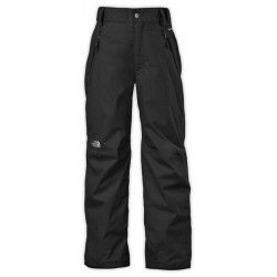 Брюки The North Face B FREEDOM INSLT PANT